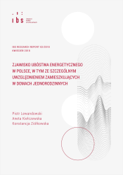 IBS_Research_Report_02_2018_pl_cover